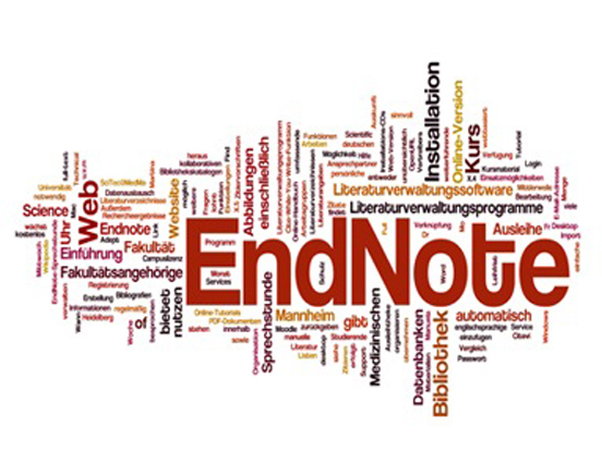 How to Use Endnote